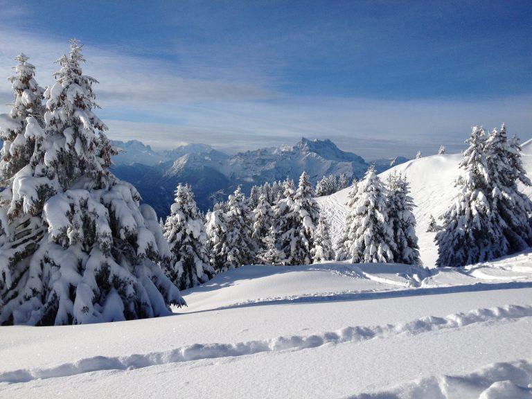 Snowshoes – Aperitif